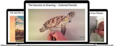 The Secrets to Drawing   TheVirtualInstructor.com Members