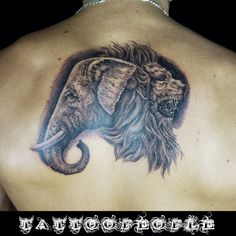 Elephant and Lion blackandgrey tattoo by @tattoopeople_zin