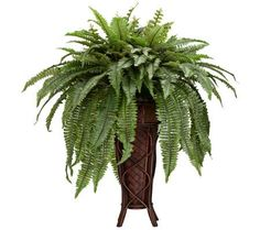 Traditional Boston Fern Faux Plant on a Decorative Stand | 55DowningStreet.com