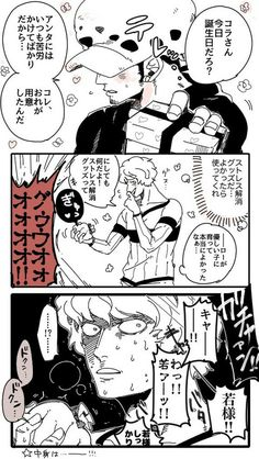 Trafalgar D Water Law Corazon Cora-san Donqixote Rosinante One Piece