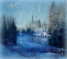 Winter Paradise - by Lianne Schneider - digital composite and digital painting.