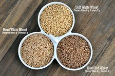 Wheat and Wheat Grinding 101: The Wheat {Types, Where to Buy, and What to Make} | Mel's Kitchen Cafe
