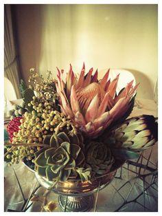 Mixed Protea, Aloe & Succulent Arrangement in Large Silver Rose bowl - Guest Tables