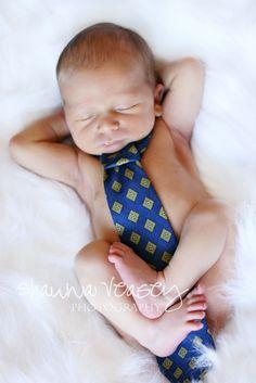 Newborn Photography - Baby boy in Daddy's tie bebe con la corabata del papa Newborn Pictures, Baby Pictures, Cute Pictures, Newborn Pics, Newborn Babies, Wedding Pictures, Baby Boy Photos, Foto Newborn, Newborn Shoot