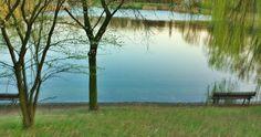 Nỗi buồn sẻ xuống nước hồ