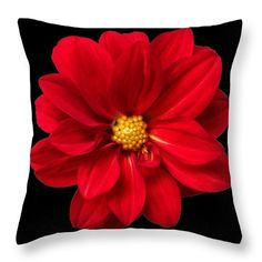 Red Summer Memory #pillow Comes in many sizes. Wonderful #homedecor Warmly welcome to visit my photoart page :)