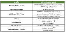 Tabela de Exames e Posicionamentos Radiográficos para Pequenos Animais - Provet Veterinary Medicine, Tables, Dog Cat, Animales