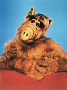 Alf Actor Dead: Michu Meszaros Dies at 76 80 Tv Shows, Best Pet Insurance, 80s Movies, Angels In Heaven, Tv Actors, Classic Tv, The Wiz, Blythe Dolls, Childhood Memories
