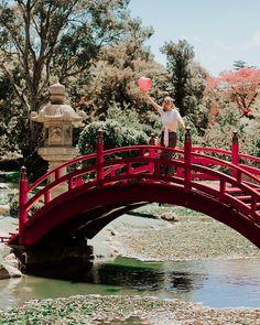 🇯🇵 ⛩ como va el domingo mi gente bella! Les deje un post Nuevo desde el fabuloso Jardín Japonés de Buenos Aires. Que ofrece tranquilidad y…