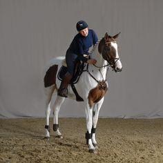 horse, paard, foto, photography, studio, paardensport, dressuur, jumping, portretfotografie