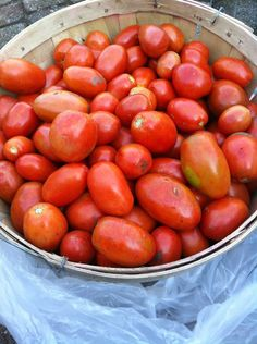You will nees bushels and bushels of tomatoes.
