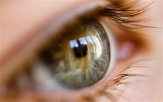 Cataracts could be cured by coaxing the eye's own stem cells into regenerating the lens