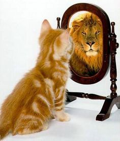 You are what you see in the mirror