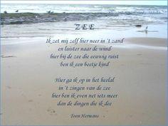 De Zee van Toon Hermans