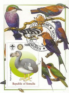 Dodo stamp from Republic of Somalia | For those that don't k… | Flickr
