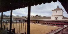 Novillada de Cebada Gago en Santa Cruz de Mudela. #cartel #novillada #Abril #toros #toreros - mundotoro.com