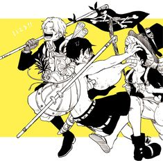 One Piece Meme, One Piece Crew, One Piece Manga, Ace Sabo Luffy, One Peace, Trafalgar Law, Funny Cartoons, Manga Anime, Brother