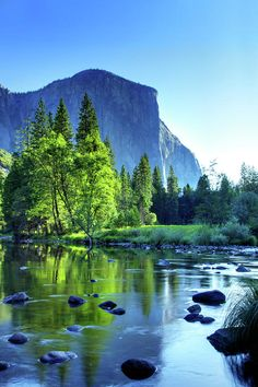 El Capitan and the Merced River, Yosemite National Park, Califorina