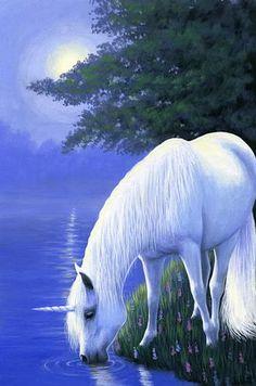 Unicorn horse misty moon lake fantasy limited edition aceo print of painting art Unicorn And Fairies, Unicorn Fantasy, Unicorn Horse, Unicorns And Mermaids, Unicorn Art, Fantasy Art, White Unicorn, Magical Unicorn, Beautiful Unicorn