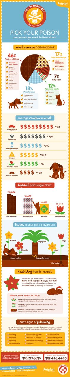 Pet Poison Awareness Infographic from Petplan. Stating the obvious: pet insurance company produced this. But includes some useful detail worthy of sharing.