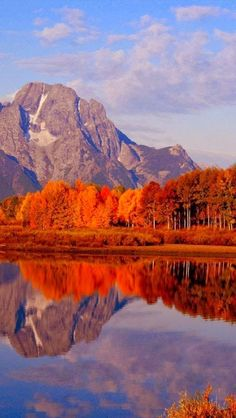 Autumn, Ox Bow Bend, Snake River, Grand Teton National Park, Wyoming ♥ ♥ Must go see MoonChild Grand Teton National Park, National Parks, Beautiful World, Beautiful Places, Beautiful Scenery Pictures, Landscape Photography, Nature Photography, Photos Voyages, Amazing Nature
