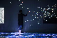 teamLab, Transcending Boundaries, Pace London gallery