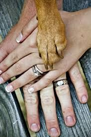 fall engagement photo ideas with dog - Google Search