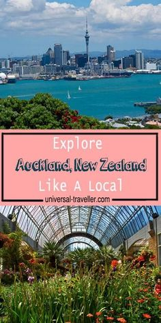 How to Explore Auckland, New Zealand like a Local. Things to do in Auckland and places to visit in Auckland. This post provides tips on Auckland sightseeing, things to do in auckland at night, activities to do in Auckland and cheap things to do in Aucklan New Travel, Ultimate Travel, Travel Tips, Travel Plan, Travel Advice, Luxury Travel, Wellington New Zealand, New Zealand Travel Guide, Visit New Zealand