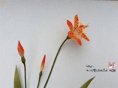 조화공예(아트플라워) 범부채 꽃 Iris domestica of artflowers crafted http://blog.naver.com/koreapaperart  #조화공예 #종이꽃 #페이퍼플라워 #한지꽃 #아트플라워 #조화 #조화인테리어 #인테리어조화 #인테리어소품 #주문제작 #수강문의 #광고소품 #촬영소품 #디스플레이 #artflower #koreanpaperart #hanjiflower #paperflowers #craft #paperart #handmade #범부채 #범부채꽃 #Iris