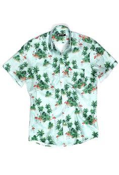 162 melhores imagens de camisa masculina manga curta  6203e4bd5a9a7