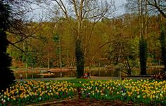 Der Blütenfrühling ist noch da. ... Ihr müsst ihn nur finden. Da ist das kommende Wochenende doch ideal. Und frische Luft gibt es gratis dazu.  :-) http://www.saarbruecken.de/de/leben_in_saarbruecken/freizeit/deutsch-franzoesischer_garten