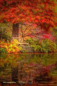 to sit there and dream...