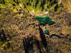 [ Magical Zelenci In Slovenia, Top Down View In Fall. Drone Photography, Slovenia, Alps, Pond, Tourism, Sky, Stock Photos, Landscape, Holiday Decor