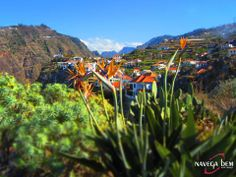 Magical Madeira island... near Ribeira Brava