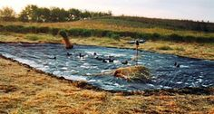 Learn to make this quick DIY decoy duck pond you can deploy anywhere you feel the need.