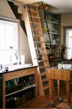 My Empty Nest--Notched ladder-stairs with handles/rails...