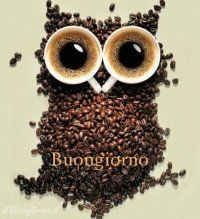 Creative advertising, owl made from coffee cups and coffee beans