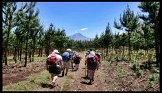 #trekking in the #kilimanjaro #tanzania route #marangú  for #uniqueexperience #worldperfectholidays olidays