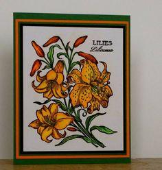 Lilies My Friend