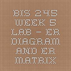 BIS 245 Week 5 Lab – ER Diagram and ER Matrix