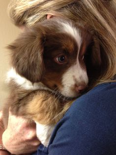 """""""Here she is at her first visit to the vet!"""""""