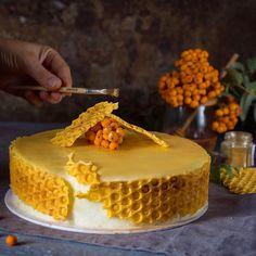 Любите ли вы медовик? Наверное его любят все, не даром этот торт стал настоящей классикой и не выходит из моды уже несколько десятилетий. Кстати, мы уже публиковали отличныйрецепт классического медовика. Каков он, всеми нами любимый медовик из детства? Вкуснейшие коржи, пропитанные нежным сметанным кремом, с золотистыми бочками, густо обсыпанными бисквитными крошками. А что если придать этому великолепному торту новый вид? Что, если добавить в него восхитительную клюквенную кислинку и… Mini Cakes, Cupcake Cakes, Entremet Recipe, Condensed Milk Cake, Bee Cakes, Honey Cake, Just Cakes, Cake Decorating Techniques, Pastry Cake