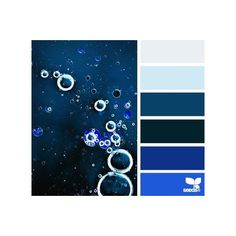 Design Seeds for all who color ❤ liked on Polyvore featuring design seeds