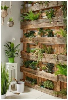 If you are looking for Diy Projects Pallet Garden Design Ideas, You come to the right place. Below are the Diy Projects Pallet Garden Design Ideas. Indoor Garden, Indoor Plants, Home And Garden, Big Garden, Balcony Garden, Wall Of Plants Indoor, Garden Beds, Garden Plants, Gravel Garden