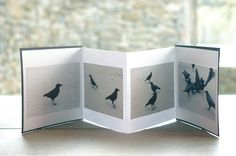 simple accordion book (my work) Diy And Crafts, Paper Crafts, Accordion Book, Types Of Books, Book Design, Design Art, Photography Lessons, Handmade Books, Photo Projects