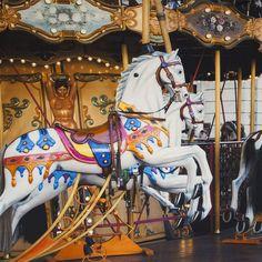 Paneel Carousel  56257-999