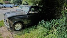 At the end of summer 2017 I recognized that vehicle hidden under a bush and my idea was, this must be an Austin.