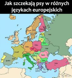 This is how dogs bark in different European languages . Funny Photos, Funny Images, European Languages, Funny Video Memes, Funny Comedy, Historical Maps, Dog Barking, Funny Cute, Vignettes