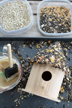 Winter Fun DIY: Create a Birdseed Cottage Feeder – Home is Where the Boat Is Bird Seed Crafts, Bird Seed Ornaments, Bird Seed Feeders, Bird House Feeder, Homemade Bird Feeders, Edible Glue, Fun Winter Activities, Bird House Kits, Bird Houses Diy