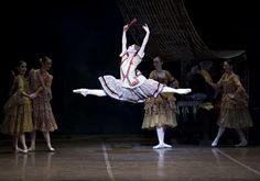 Boston Ballet Don Quixote by Gene Schiavone